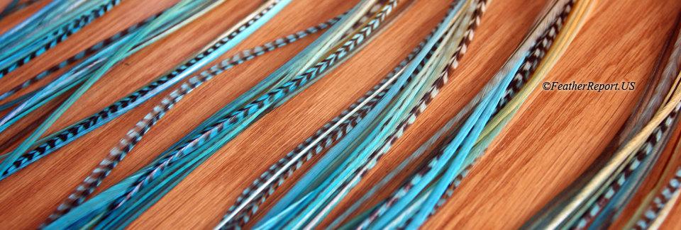 Frozen Blue Ombre Feather Hair Extensions 10pcs