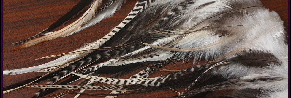 Bulk Rooster Feathers Natural Craft Feathers 50PCS