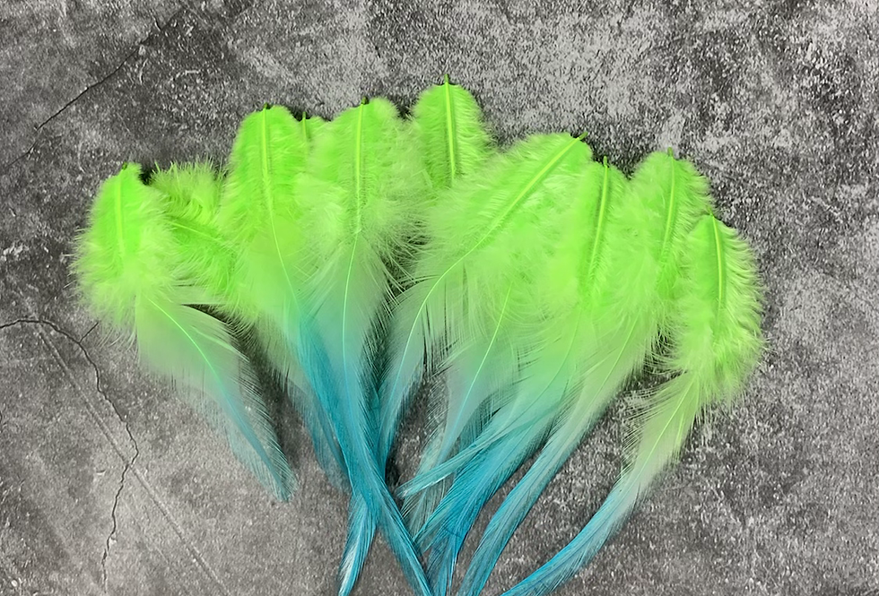 Bright Kelly Green Aqua Craft Feathers Ombre Feathers for Crafts 12PCS