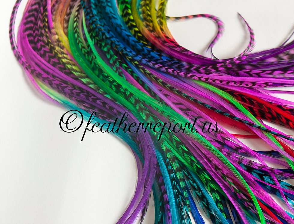 10 Rainbow Feather Extensions Ombre Hair Extension Multicolored Rooster Feathers