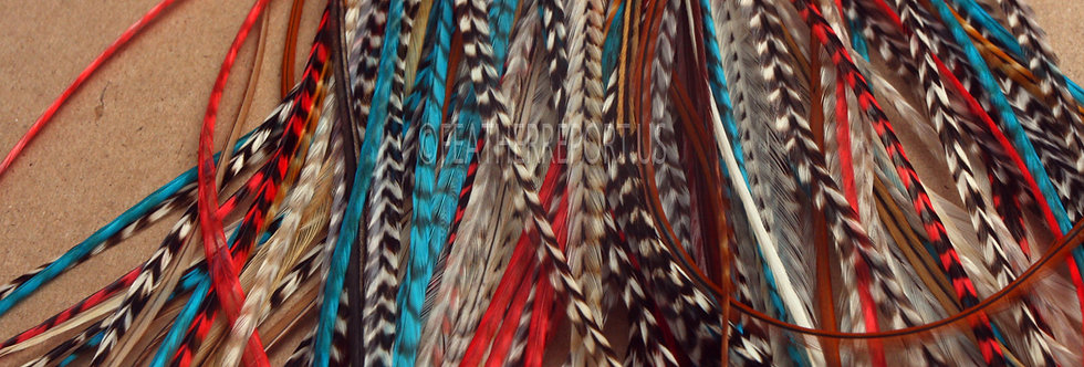 Native American Color Feather Extension DIY Kit,10