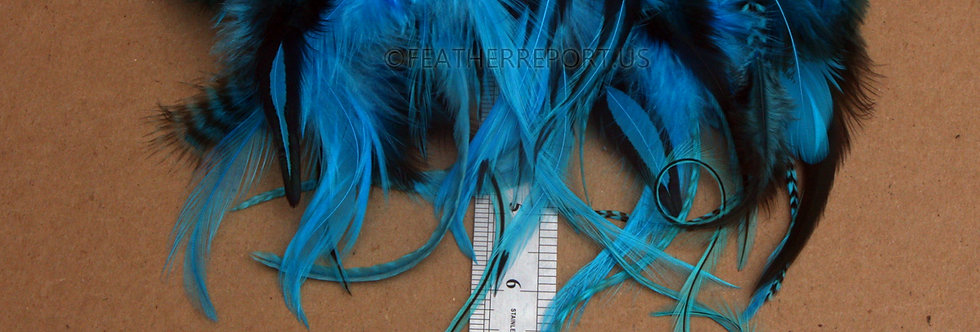 Mixed Turquoise Blue Real Bird Feathers for Crafts 30PCS