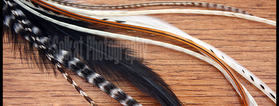 Best Selling Natural Extension Feathers Kit