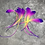 """Thumbnail: Long Fluffy Rooster Craft Feathers Purple Pink Yellow Ombre Feathers x10 9-15"""""""
