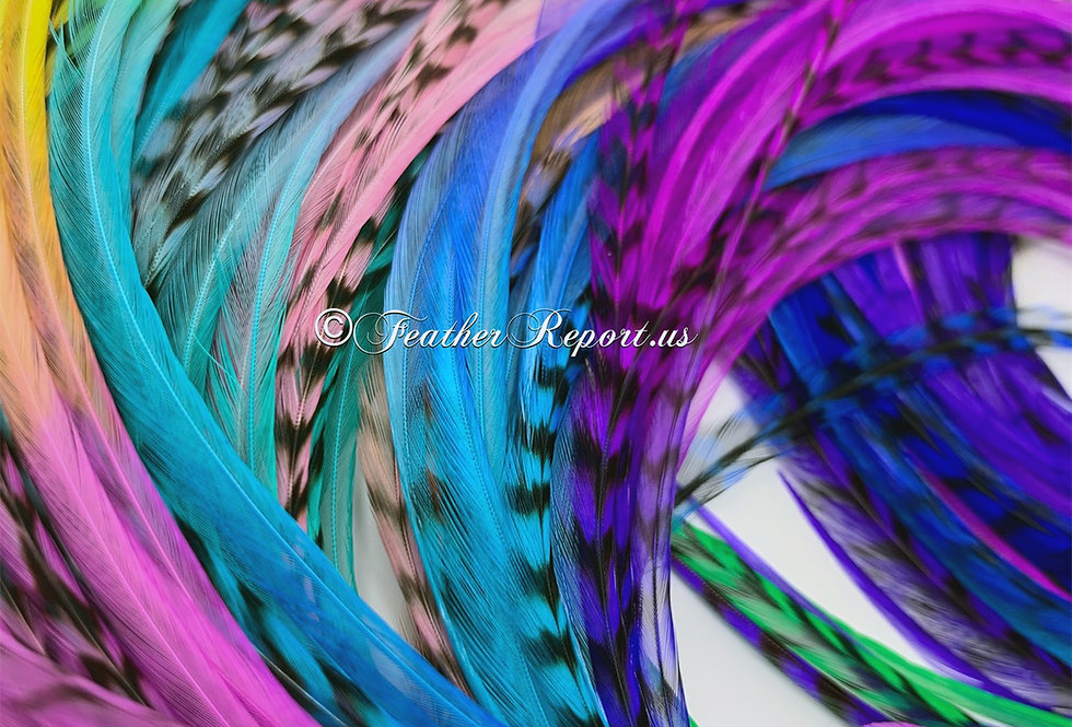 "Neon Rainbow Feather Extensions Super Long Pack of 25 14-16"" Real Feathers"