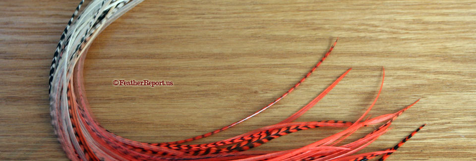 Poppy Red Creme Long Hair Feathers Dip Dyed 10