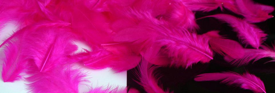 DIY Weddings Hot Pink Feather Petals