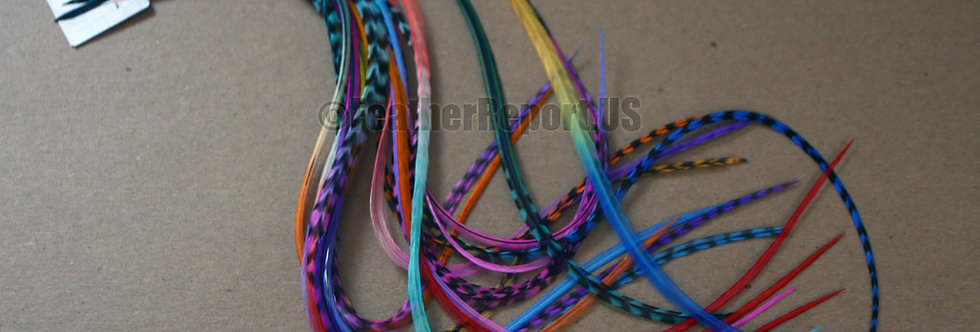 Extra Long Feather Extensions Wholesale Rainbow 25