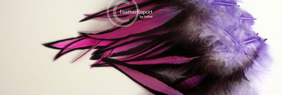 Purple Pink Laced Rooster Feathers 10Pack
