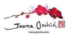 jaxma2.png