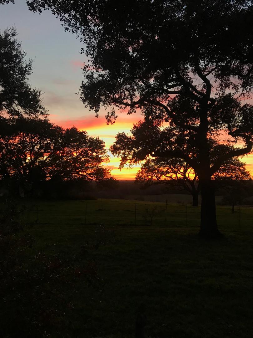 Sunset Photo.jpg