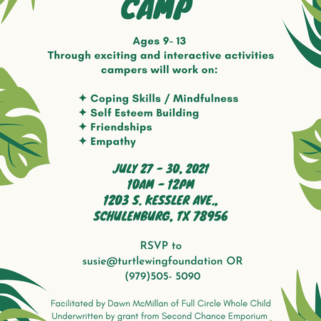 Turtle Wing Foundation to Host Social Skills Camp