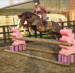 Balance training for Kate 🚀 #jumping #showjumping #jumptraining #equestrian #horses #ridertraining