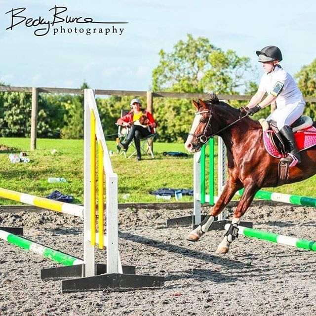 This pony 😍_The Day 2 of 3 of the Summer Camp reflections with many fantastic photos by _becky_bunc