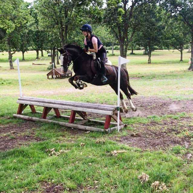 Sofija and Jack - because who needs height when you have springs 😁 #littleponybigheart #xcschooling