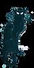 E77390DA-992F-497B-9738-B318ADE92835.PNG