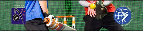 Affiliated Member of New Zealand Indoor Netball