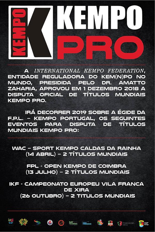 poster_Kempo_pro-01.jpg