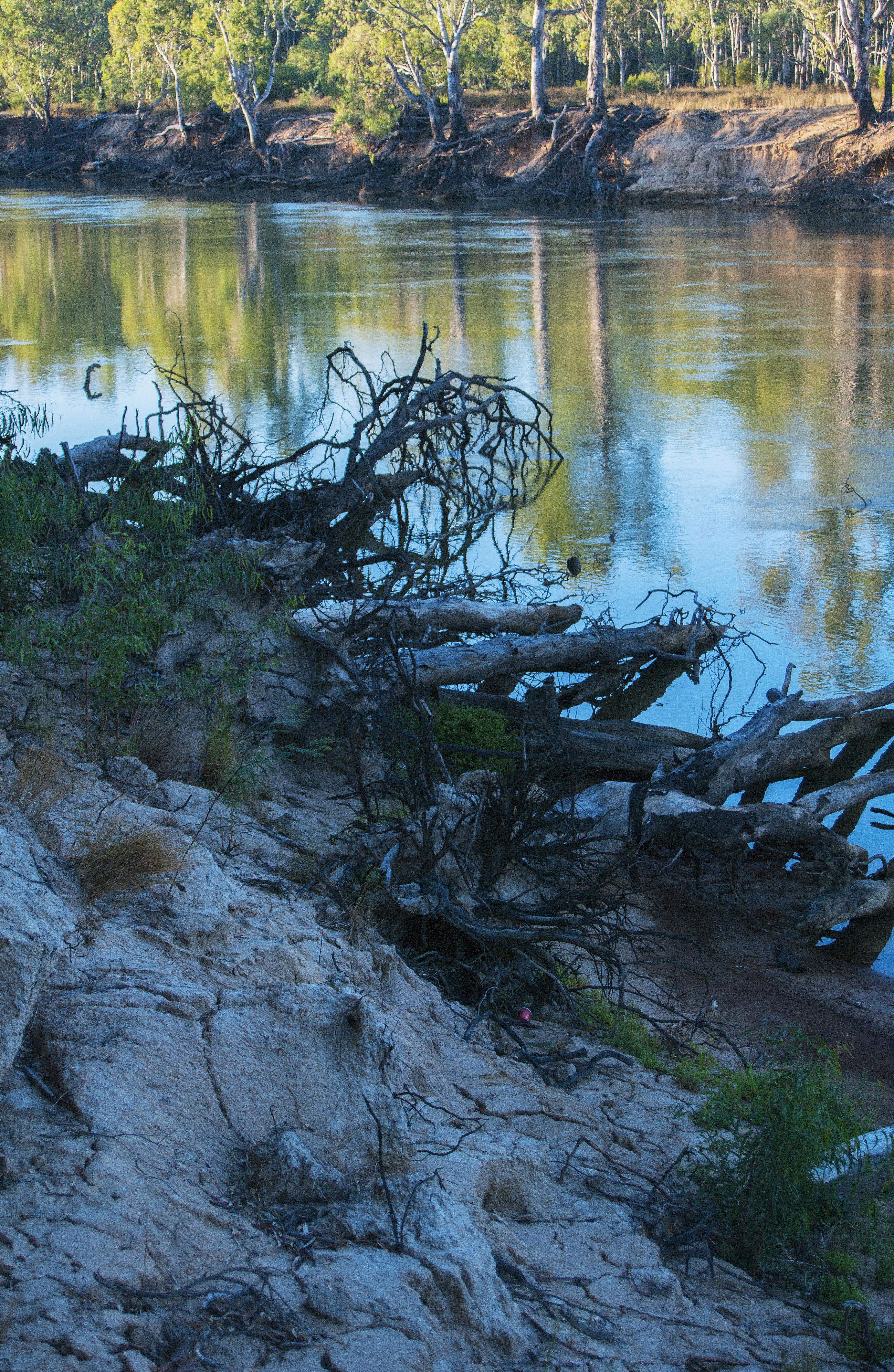 Murray River - Echuca Victoria.