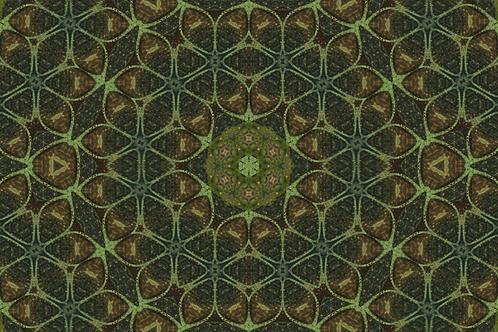 Vaulted 2