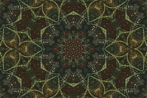 Vaulted 5