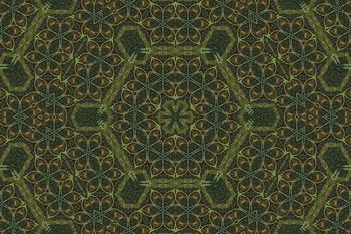 Vaulted 6