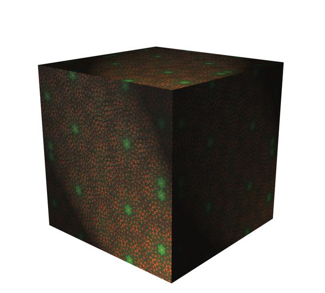 Cube No1
