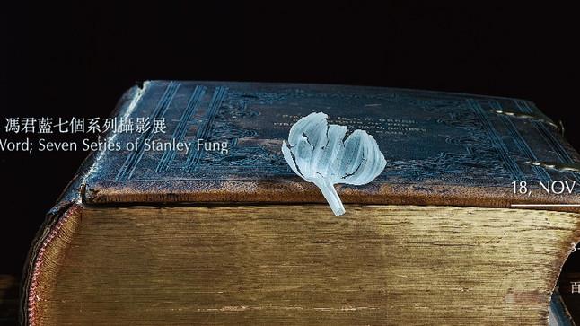 【馮君藍 攝影展】七 —— 惟道是從之所見