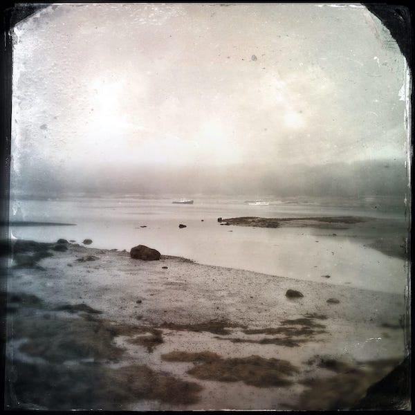 Picnic Cove (6590)