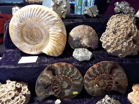 Bericht zur Mineralien- und Fossilienbörse 2017