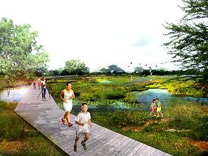 Rendering wetland park.jpg