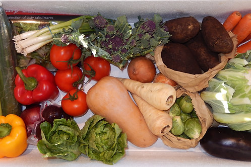Large Veg & Salad Box