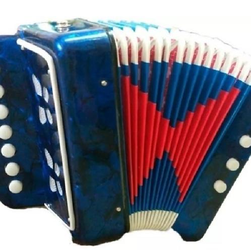 Acordeón Instrumento Musical Niños Teclas Grande