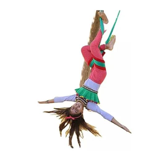 Columpio Hamaca Circo Yoga Pilates Acrobacia Soporta 80kg