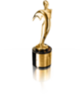 Gold Telly Award