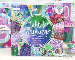 amy sia wildflower paper 5