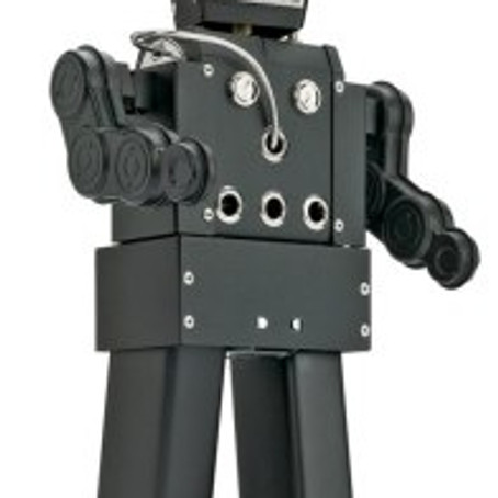 Bot v Human