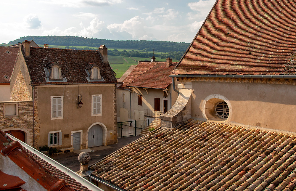 View from our rooftop terrace, Puligny-Montrachet
