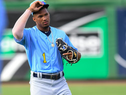 Rays Plethora of Top Prospects
