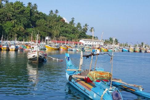 Sri Lanka4460.jpg