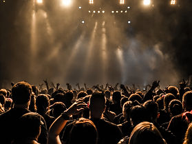 silhouettes of concert crowd in front of