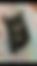 kedi sahiplendirme ilanları içinde birinci resmin ikon boyutu