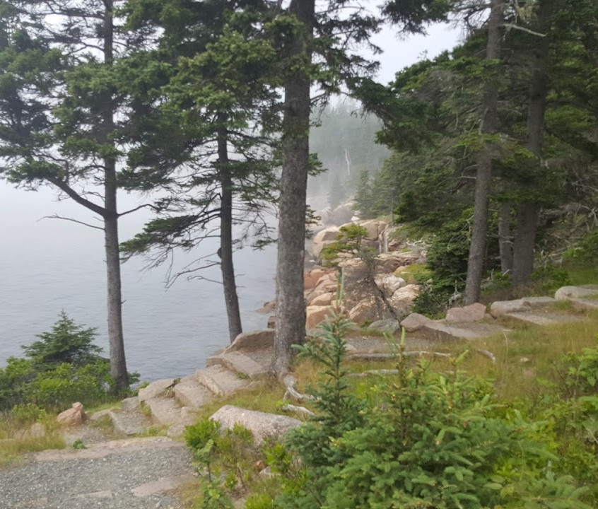 Walking trail with views in Acadia NP, Maine