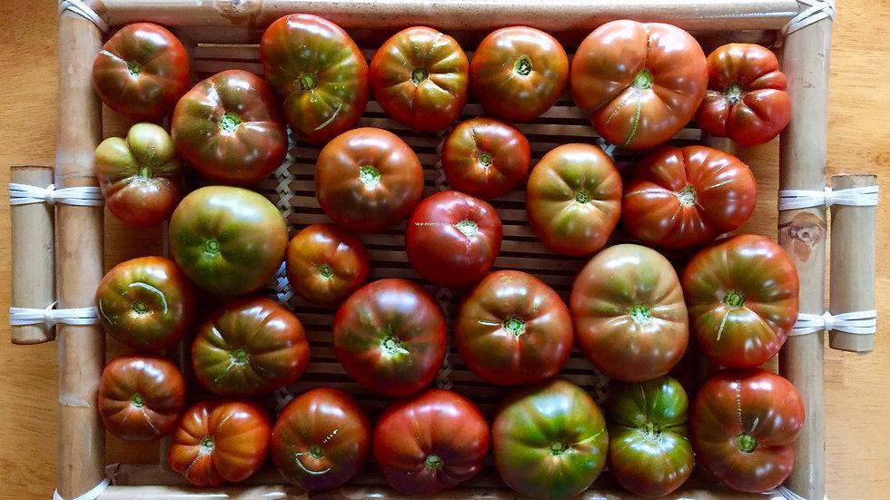 Siberian Tomato Seeds