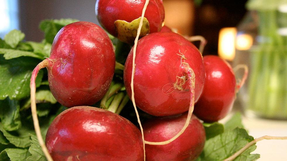 Giant Crimson Radish Seeds