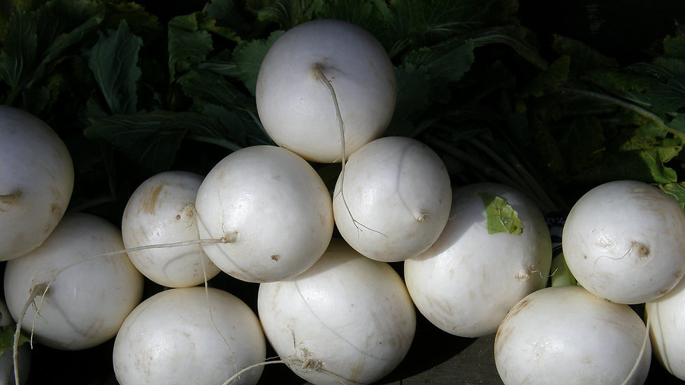 White Egg Turnip Seeds