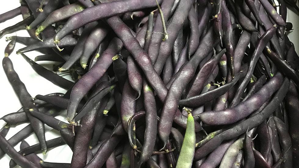 Purple Podded Bush Bean Seeds
