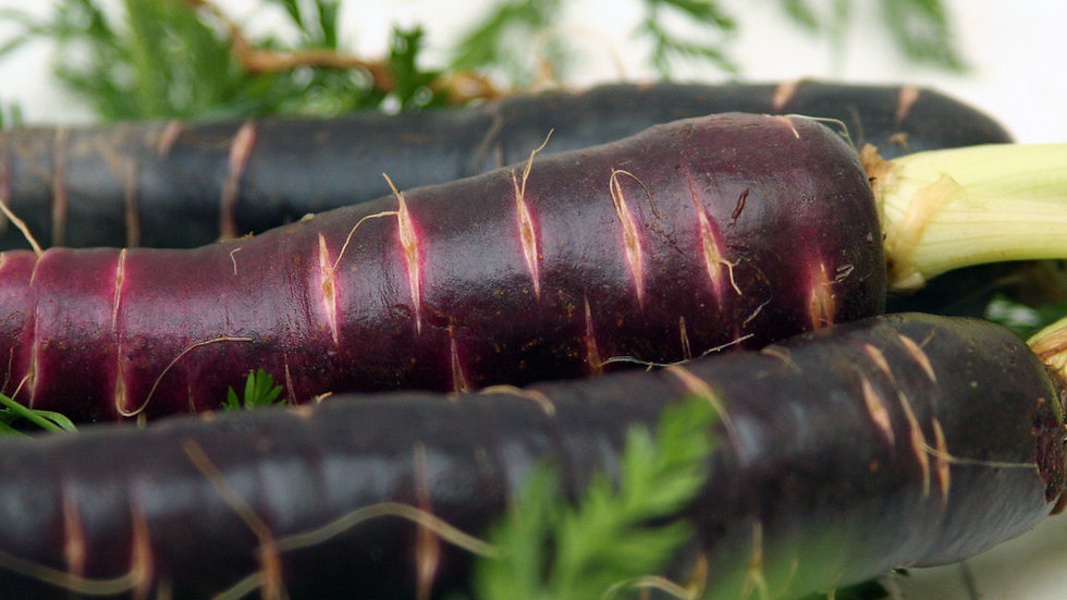 Black Nebula Carrot Seeds