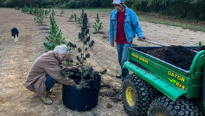 Growers Carry on Cherokee Tradition