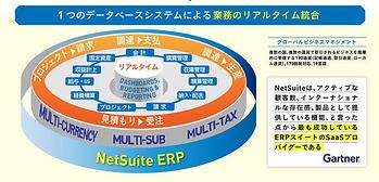 NetSuite一括管理.png